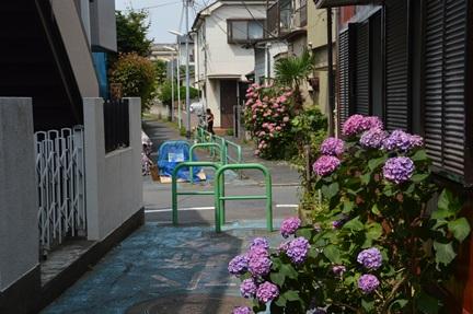 2014-06-21_51.jpg