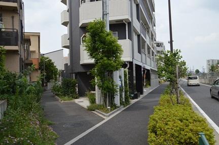 2014-06-21_63.jpg
