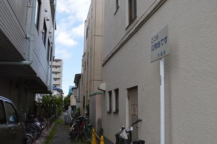 2014-06-29_105.jpg