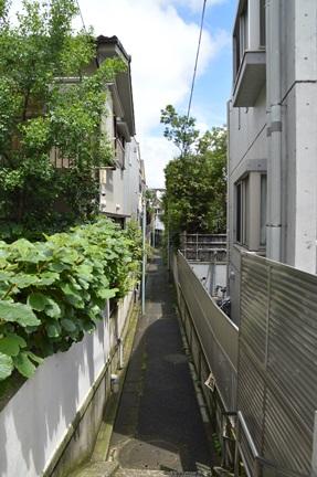 2014-06-29_7.jpg