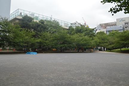 2014-07-19_48.jpg
