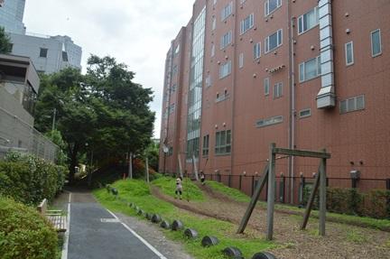 2014-07-21_36.jpg