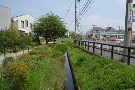 2014-08-17_116.jpg