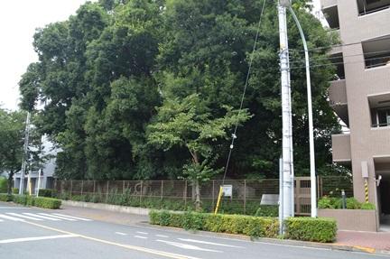2014-08-17_37.jpg