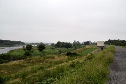 2014-08-17_4.jpg