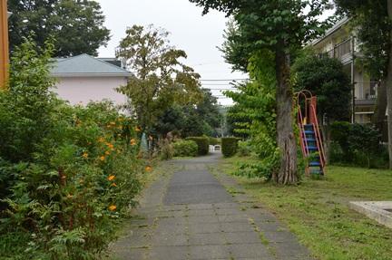2014-08-17_59.jpg
