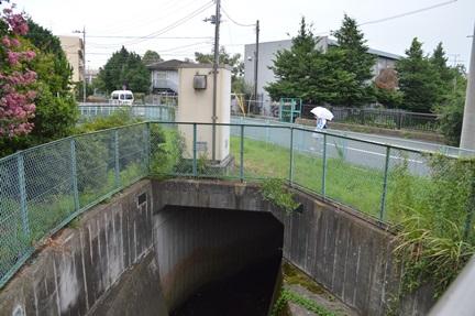 2014-08-23_66.jpg