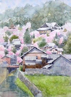 長谷寺桜A201404