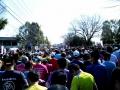 熊谷さくらマラソン1