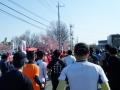 熊谷さくらマラソン2