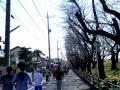 熊谷さくらマラソン11