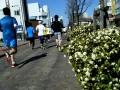 熊谷さくらマラソン45