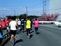 熊谷さくらマラソン27