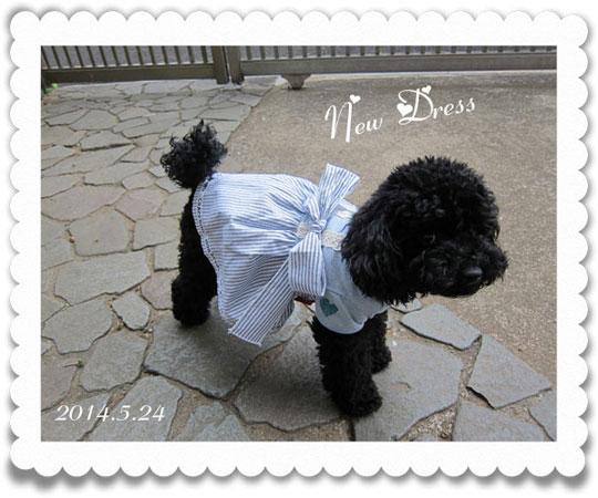 ran-dress-0.jpg