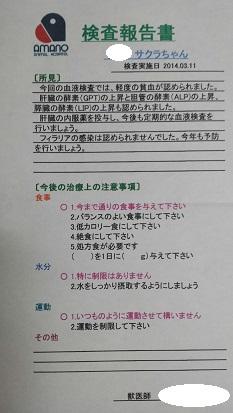 20140313.jpg