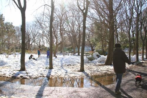 雪道散歩7