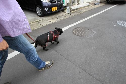 京都旅29