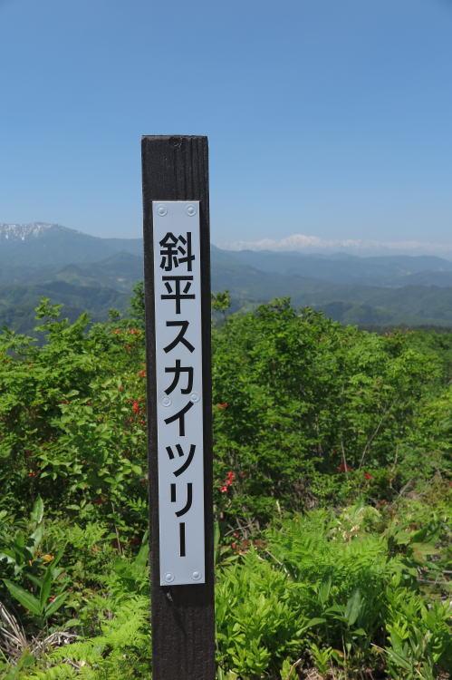 2014-0609-031.jpg