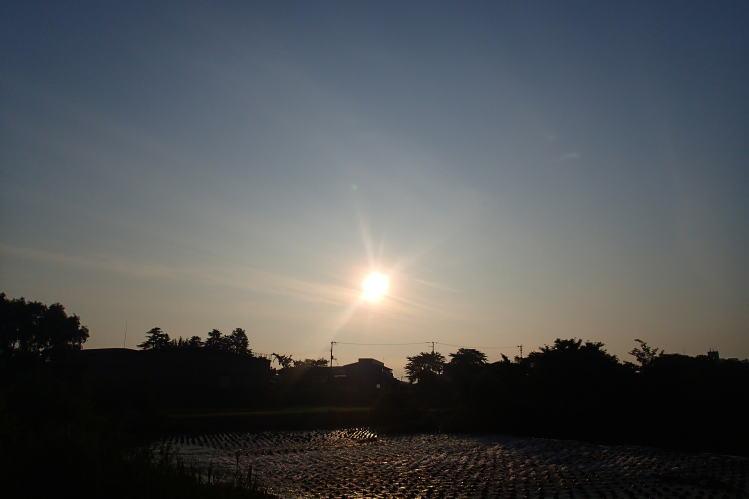 2014-0704-011.jpg