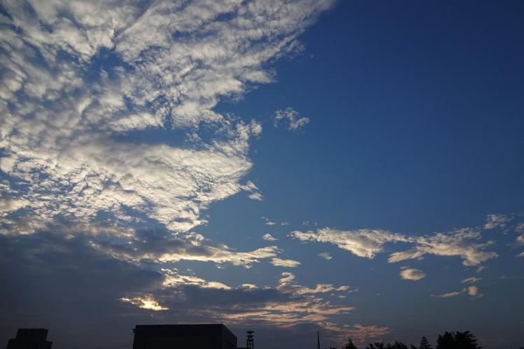 2014-0823-011.jpg