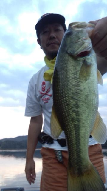 2014-9-15ouji.jpg