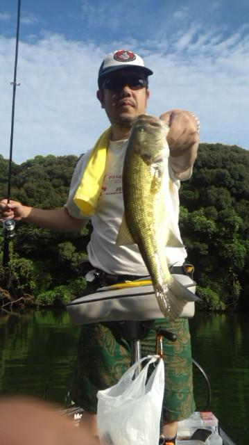 2014-9-8-41ouji.jpg