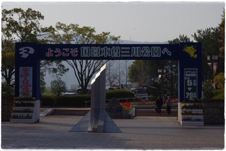 IMGP4740.jpg