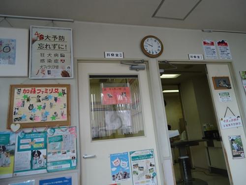 DSC09612.jpg