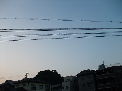 s-022_20140528053102dfa.jpg