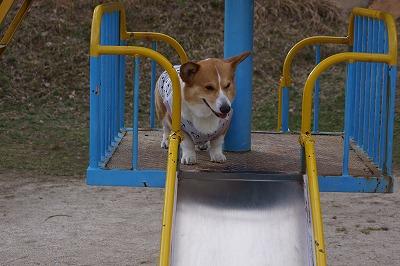 お子ちゃまの滑り台