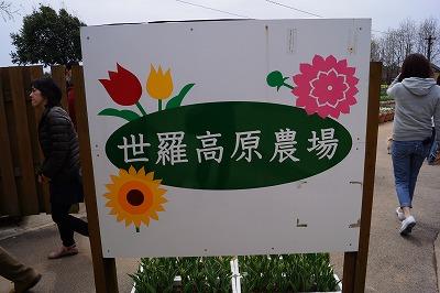 s-DSC05121.jpg