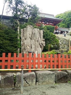 鎌倉DSC_3139