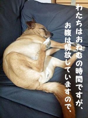 ○DSC_3624