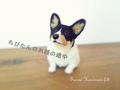 ざっくりお顔DSC_3986
