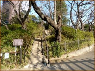 20140219 亀塚公園 バイクと衝突