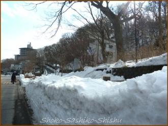 20140225 雪道 鹿の湯温泉