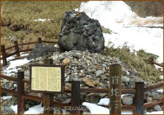 20140225 盲蛇石 鹿の湯温泉