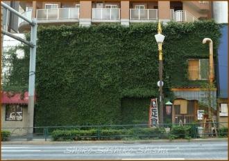 20140315 20130901 ビル 2通り 緑の館