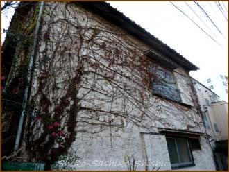 20140315 新家 4 冬の緑の館