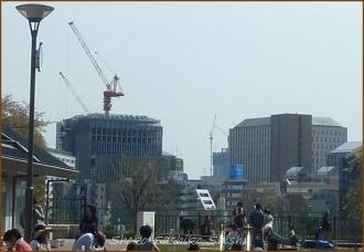 20140416 12 目白台公園 3 春学期 散歩
