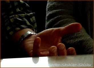 20140516 手爪 2 文楽三味線