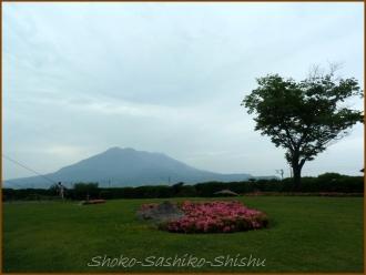 20140524  仙厳園 桜島 九州