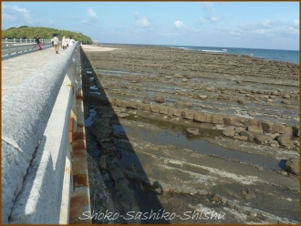 20140530 洗濯岩 2 日南海岸