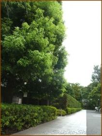 20140812 道 本坊  護国寺