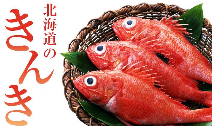 kinki_title.jpg