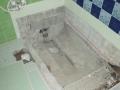 浴室ヤマトシロアリ被害