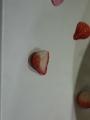 このイチゴを見よ!