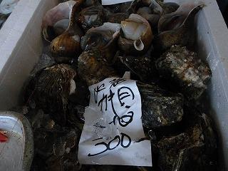 まるきん、大西鮮魚店 012