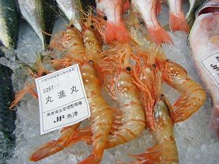 鮮魚の山崎 008
