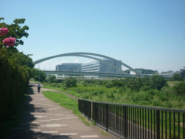 2014-08-20 鴨池大橋